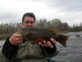 Turtle Chalet-Spring smallie