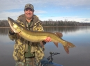 Turtle Chalet - 45 inches TFF musky
