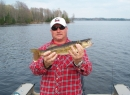 TFF-Male walleye
